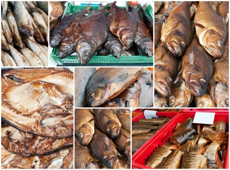 Collage of golden smoke-dried fish in market   Includes smoked salmon,  bream,  herring, hake and  perch