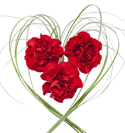 Three red carnation with grass in the form of heart on white isolated background