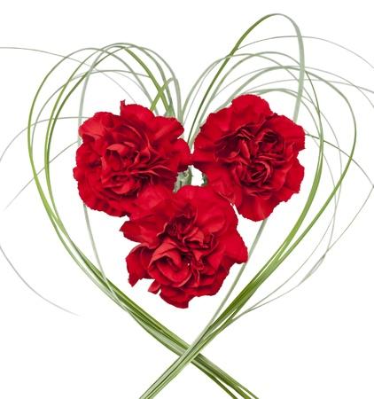 Trzy czerwone goździki z trawy w formie serca na białym tle