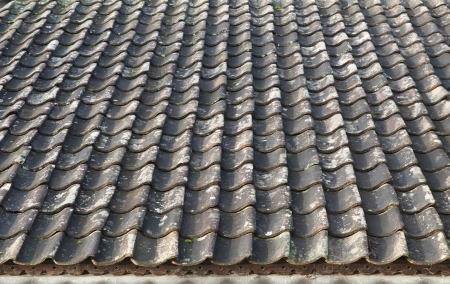 The old vintage roof is covered with tiles