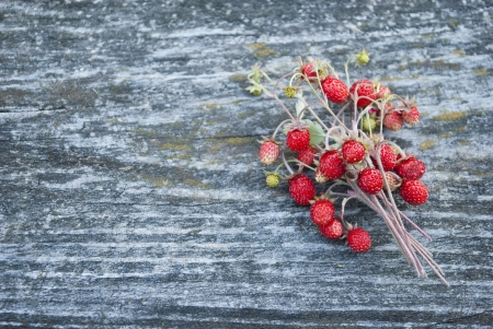 Ripe, juicy forest wild strawberry on a gray ancient wooden background photo