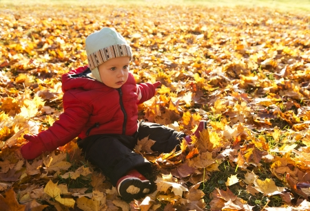 The surprised little boy sitting on a glade among autumn leaves Stock Photo