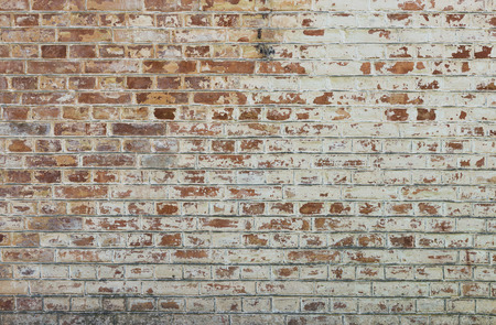 white wall texture: Background of old vintage dirty brick wall with peeling plaster, texture