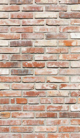 Background of brick wall in bright sunny day glose up