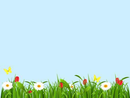 hayfield: Spring landscape from a grass, flowers and butterflies on a blue background