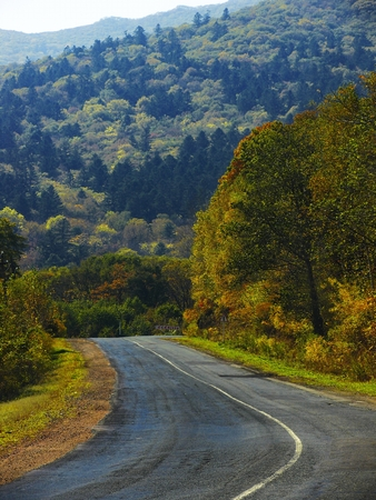 The road near mountain with autumn forest photo