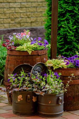 potherb: Blossoming flowerbeds in barrels and boxes Stock Photo
