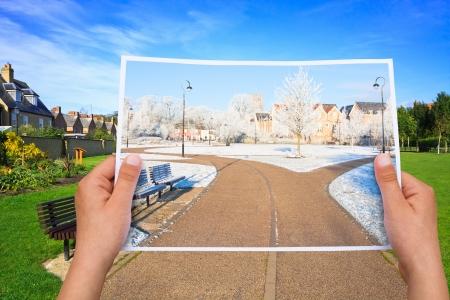memorable picture summer park vs winter