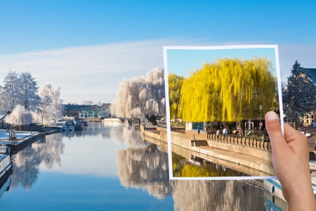 memorable: memorable picture summer willow tree vs winter Stock Photo