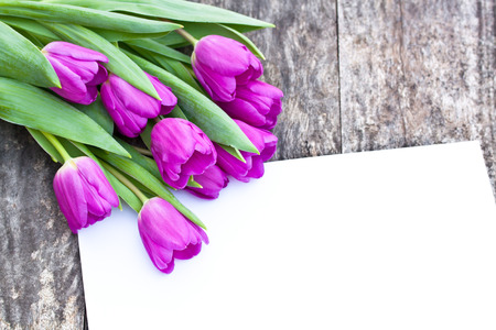brawn: violet tulips on the oak brawn table with white sheet of paper Stock Photo