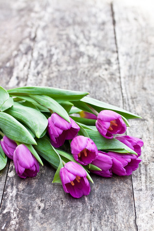 brawn: bouquet of violet tulips on the oak brawn table