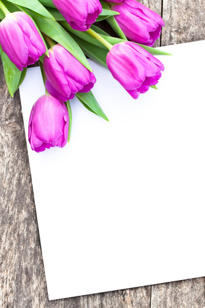 brawn: violet tulips on the oak brawn table with white sheet of paper 3 Stock Photo