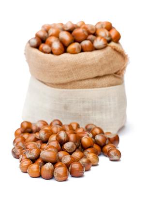 cobnut: fresh hazelnut in sack bag on white background