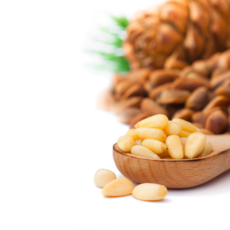 cone shell: Cedar nuts and cedar cones on white background Stock Photo