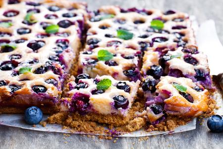 Shortcrust  pie with blueberries and condensed milk  版權商用圖片