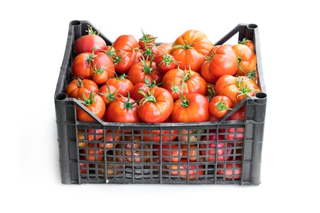 Fresh  ripe big tomatoes in plastic crate isolated on white Banque d'images