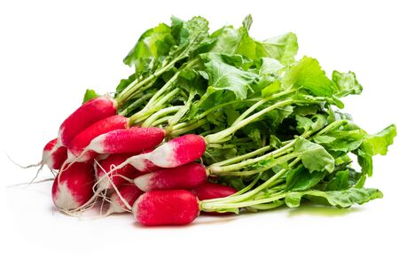 Bunch  of red radish isolated on white