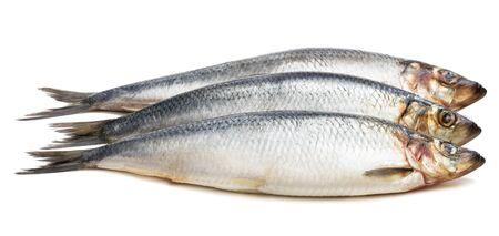 Set of  fresh whole herring fish isolated on white
