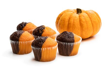 Fresh  pumpkin and chocolate minimuffins with pumpkin isolated on white