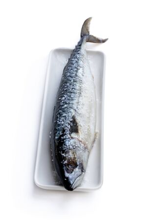 Fresh  Mackerel with sea salt on serving plate isolated on white