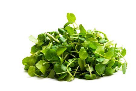 Watercress salad leaf isolated on white background
