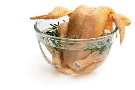 Raw whole  corn fed poussin in clear glass bowl isolated on white