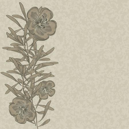 flax: Flower hand drawn flax background