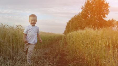 Little boy runs through a wheat field. Summer nature, walking outdoors. Child happiness. Happy childhood