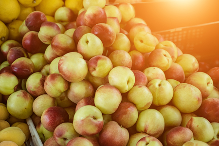 Immagine ravvicinata di mele rosse e verdi fresche.