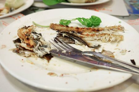 remains of eaten fish on a plate, close up.
