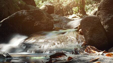 morning sunlight falls on tropical forest creek with crystal clear water flowing past dark grey stones in heavy shadow extreme close view Stok Fotoğraf