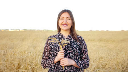 Portrait of a brunette woman with a bouquet of ears of ripe wheat in a field. Zdjęcie Seryjne