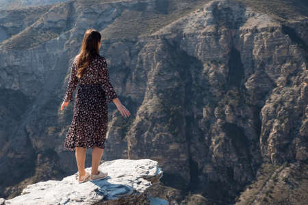 Long haired brunette in long polka dot dress stands on dangerous rocky cliff edge against bare mountains under bright sunlight backside view Zdjęcie Seryjne
