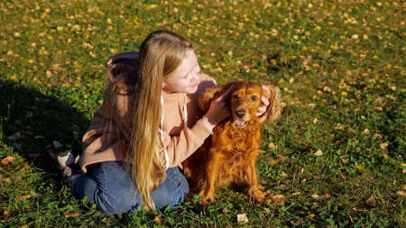 Smiling blonde girl in pink hoodie and jeans pets ginger dog sitting on green meadow grass under bright autumn sunlight closeup 스톡 콘텐츠