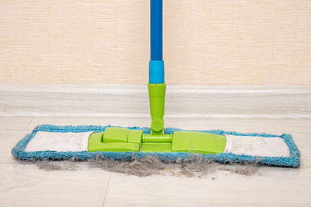 Close-up of a mop with collected debris. 스톡 콘텐츠