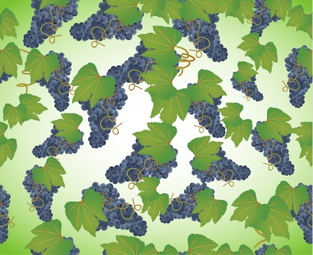 seamless background a bunch of grapes Stock Vector - 17957291
