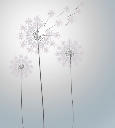 trajectory: abstract dandelion