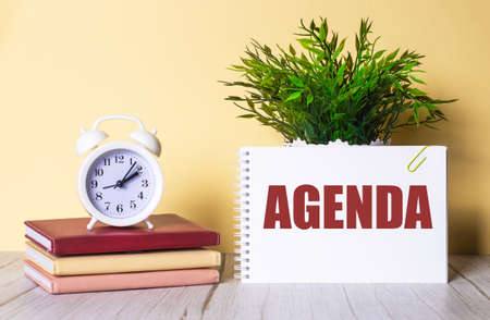 AGENDA is written in a notebook next to a green plant and a white alarm clock, which stands on colorful diaries. Organizational concept.
