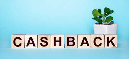 The word CASHBACK is written on wooden cubes near a flower in a pot on a light blue background