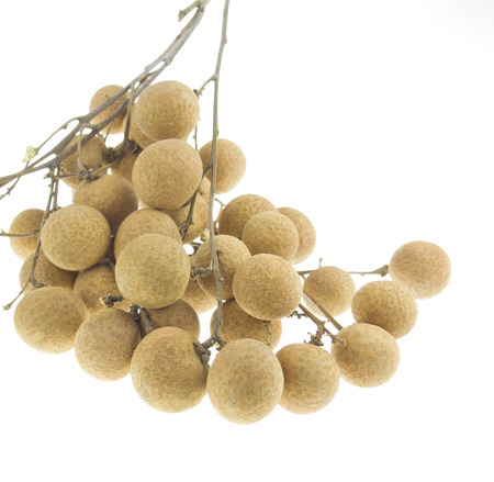 Tropical fruits longan isolated on a white background photo