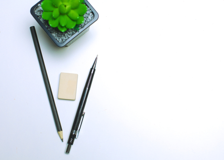diary, pencils and cactus on the desktop