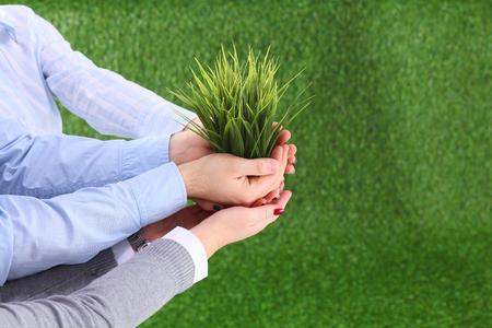 Dos pares de manos sosteniendo suavemente una planta joven