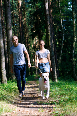 mate married: Young Couple Walking Dog. Stock Photo