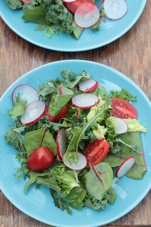 freshly prepared: Freshly prepared green salad with sliced radish and cherry tomatoes.