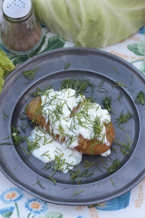 concertina: Closeup of baked concertina potato with curd and  dill. Stock Photo