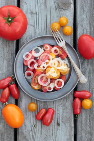 preparaba: S�lo preparado ensalada de tomate y cebolla en una placa de esta�o.