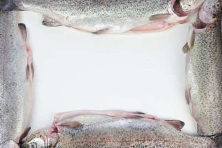 gutted: Four gutted trout fish formed in a frame.