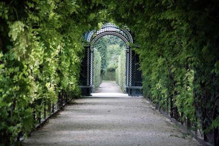 ar: Walkway through Arbor in Park Schonbrunn Palace in Vienna, Austria