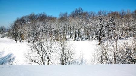 nizhny novgorod: April blue sky in beautiful park Nizhny Novgorod Russia
