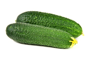 Freshness two cucumbers on white background photo